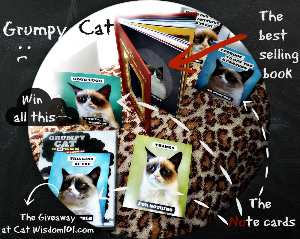 Grumpy Cat Book & Note Cards Giveaway & #GrumpytownUSA Contest