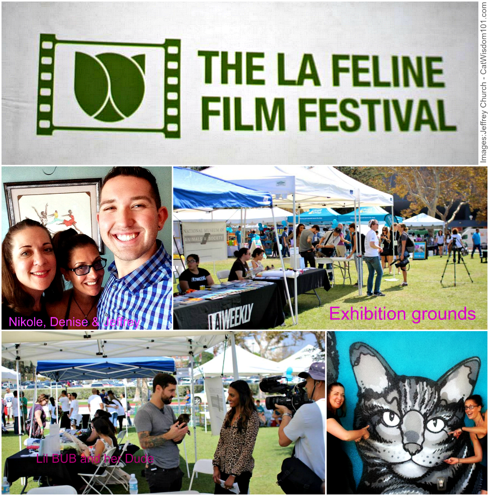 #LAFFF grounds
