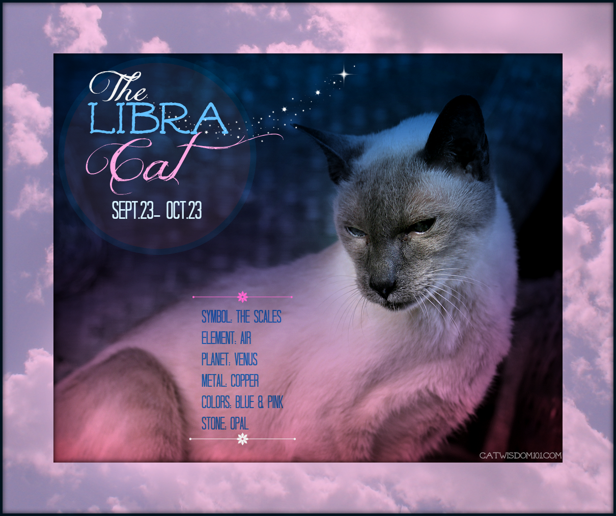 Merlin cat-astrology Libra