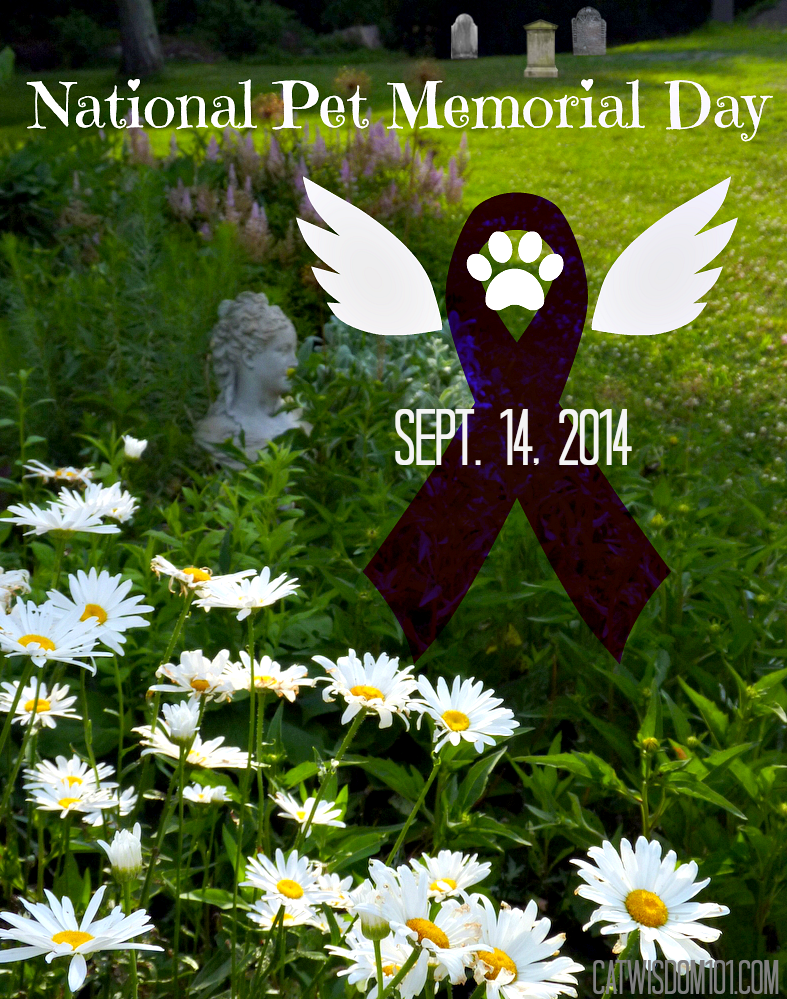 National Pet Memorial Day