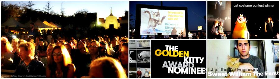 #LAFFF-feline film festival
