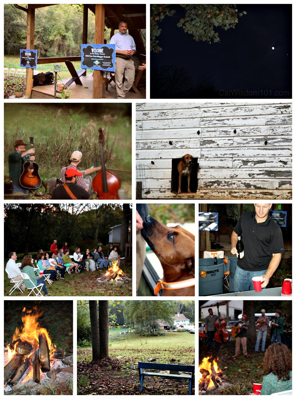 PetSafe summit 2014- Jay Clark
