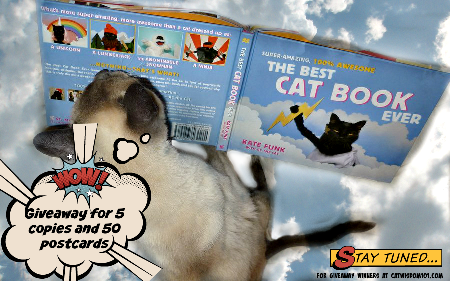 The Best Cat Book Ever: Review, Author Q & A and Giveaway