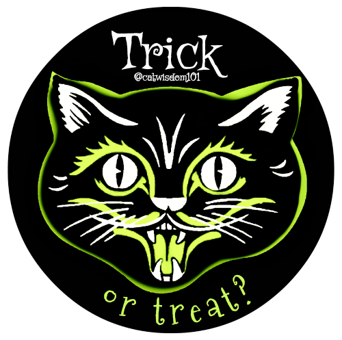 cat_trick_treat_catwisdom101
