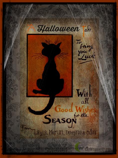 halloween tale-cat card
