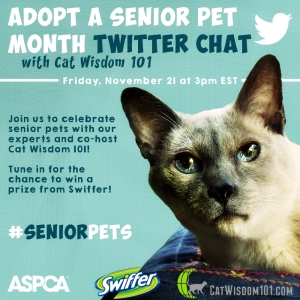 ASPCA Adopt a Senior Pet Twitter chat-#seniorpets