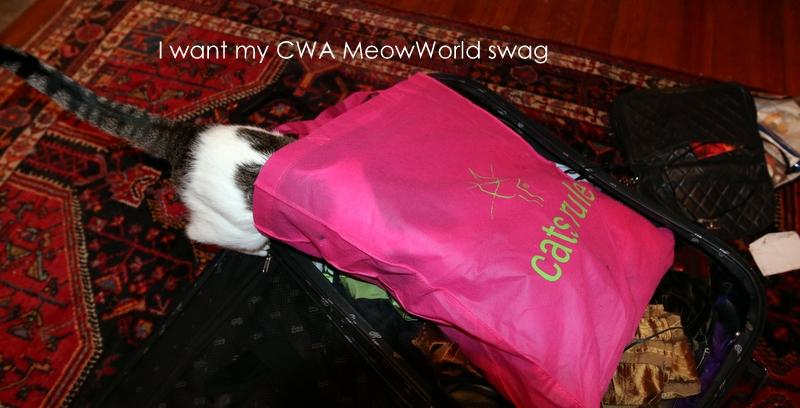 CWA MeowWorld