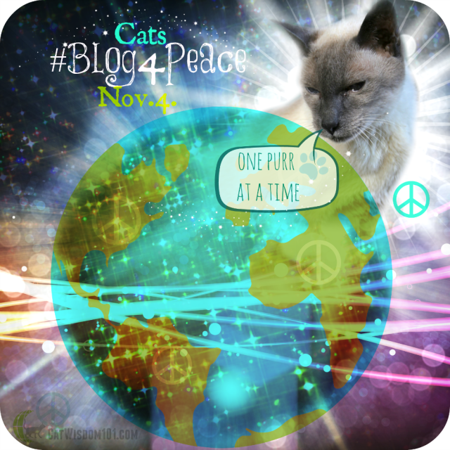 Cats #Blog4Peace One Purr at a Time