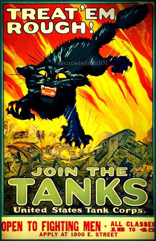 war_cats_poster