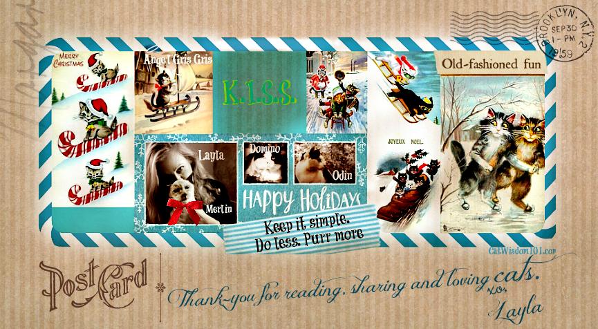 Cat Wisdom 101 Holiday post card
