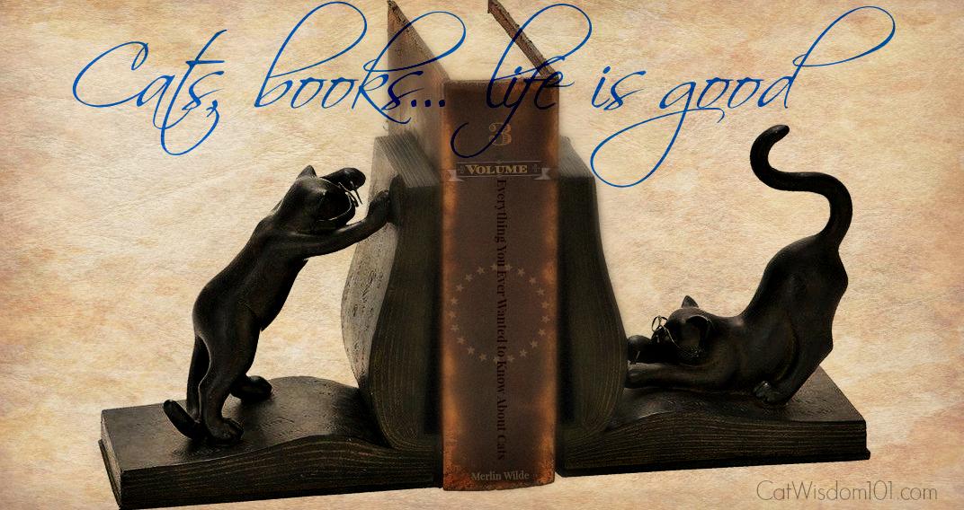 Cat_books_reading quote