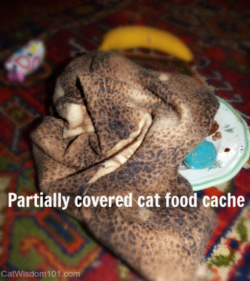 cat food cache