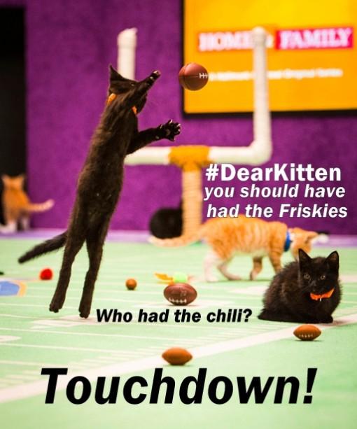 #kittenbowl 2015- Friskies #dearkitten