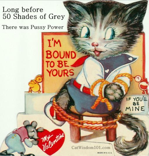 50 shades of grey cats-vintage Valentine