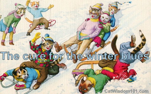 Vintage cats winter blues sledding