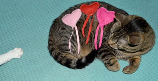 leather catnip toy-cat lovers valentine etsy giveaway