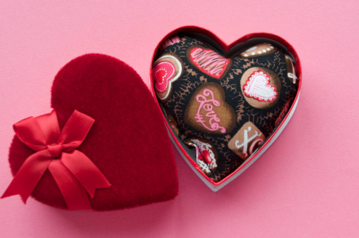 cat lovers valentine catnip hearts box-polydactyl cats giveaway