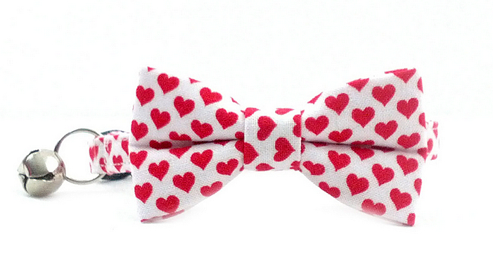cat lovers valentine giveaway-bowtie collar -Rileywear