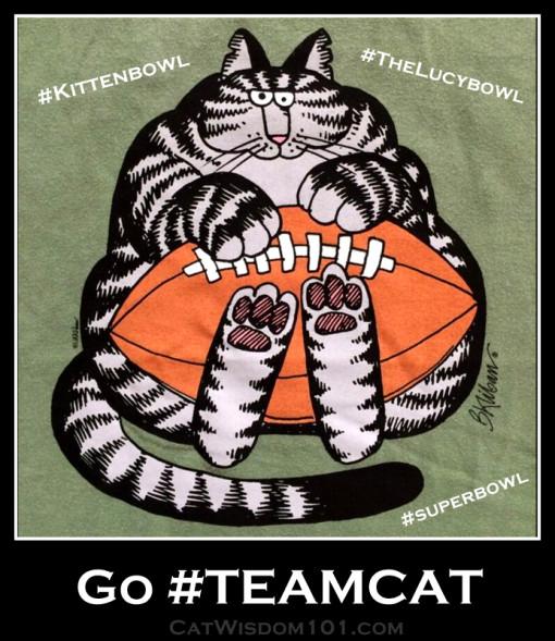 #teamcat #Thelucybowl