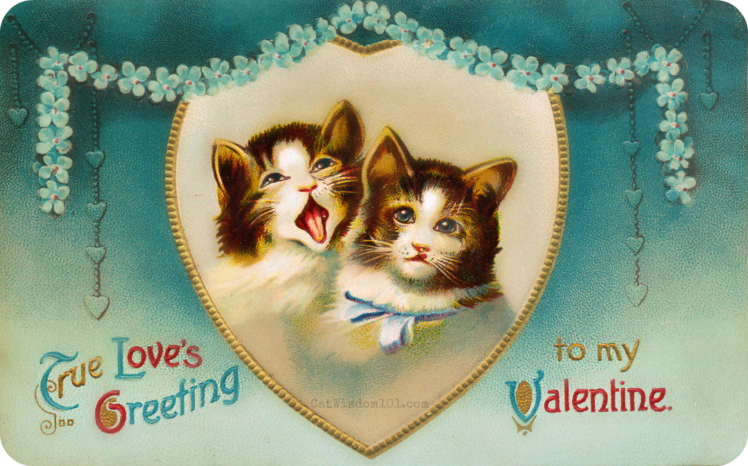 vintage-cat-Valentines-2-cats 120 Years of Valentines With Cats