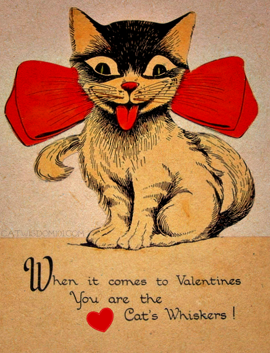 intage cat Valentines-big bow tie