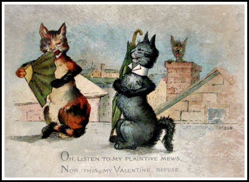 vintage-cat-Valentines-edwardian 120 Years of Valentines With Cats