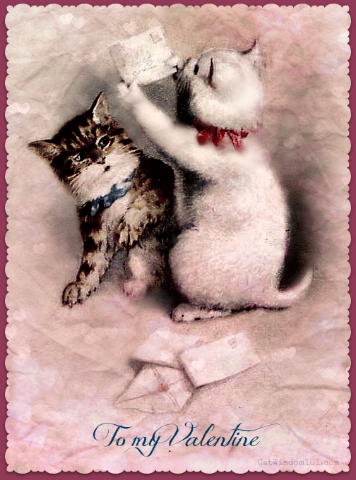 vintage-cat-Valentines-letter 120 Years of Valentines With Cats