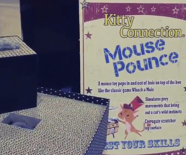 Mouse pounce cat toy