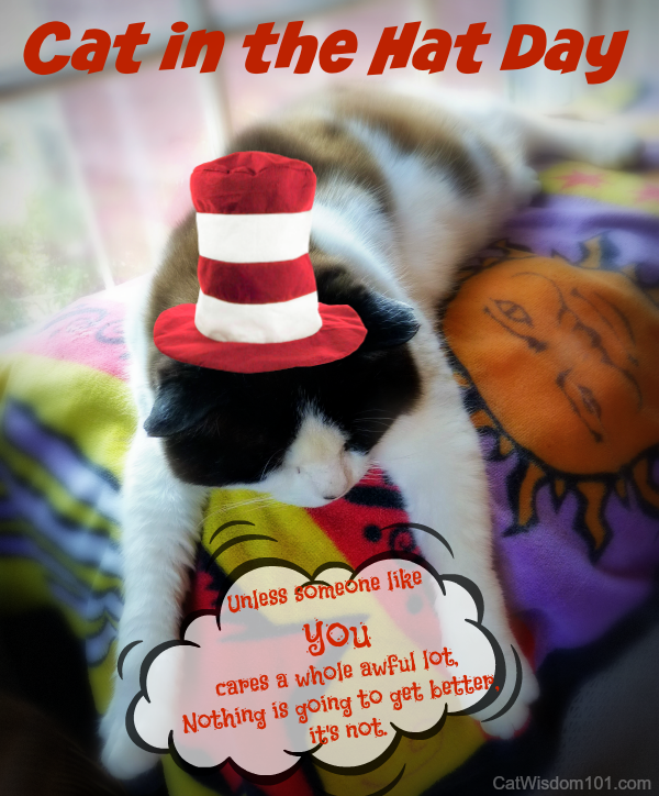 Quote-cat-dr.seuss-cat in the hat day