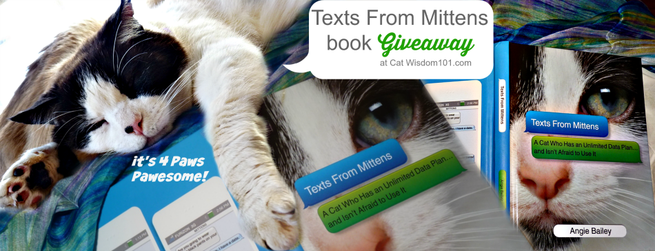 Texts From Mittens Cat Book Giveaway