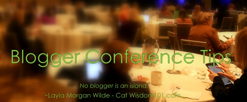 Blogger conference tips