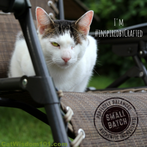 Hills Ideal Balance Crafted cat food #inspiredbycrafted