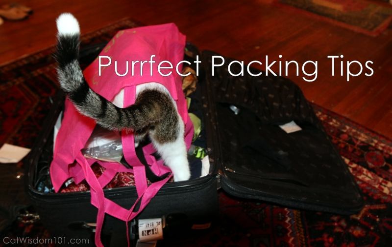 conference packing tips