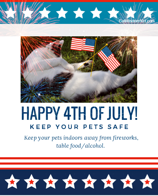 July 4th safe pet graphic