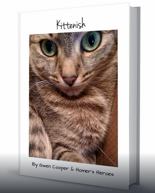 Kittenish book