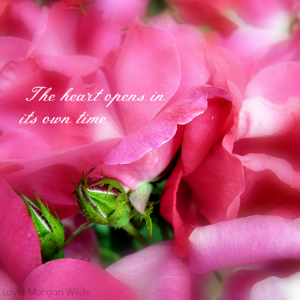 heart rose quote