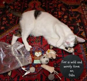 Purrfect Play catnip toys