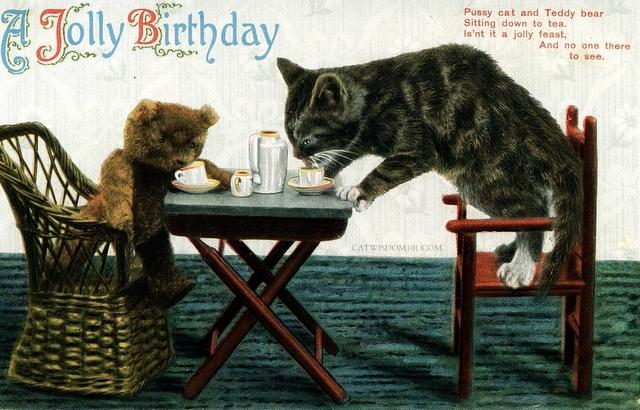 VINTAGE CAT BIRTHDAY  TEDDY BEAR.