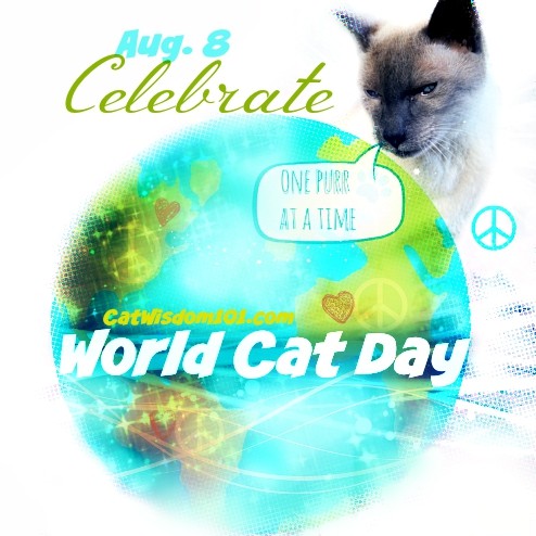 World Cat Day- International