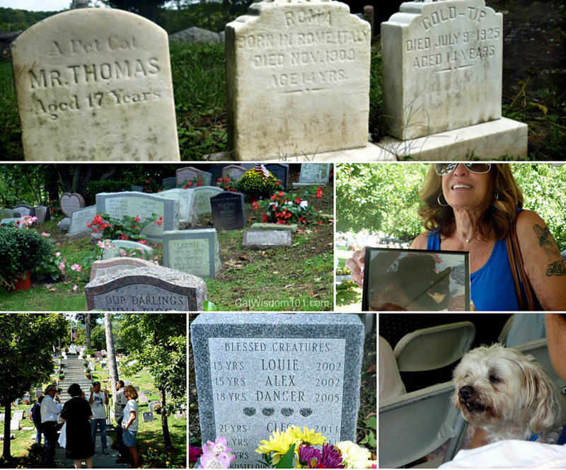 Hartsdale cemetery
