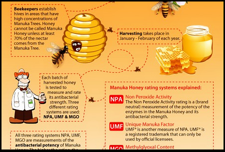 Manuka honey facts