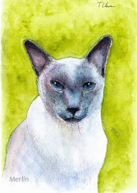 Merlin cat art-one drawing daily