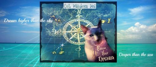 dreams quote-sea map- merlin cat