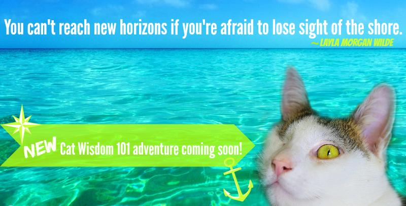 cat quote horizon shore new