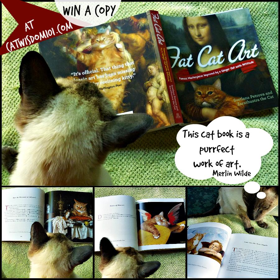 fat Cat Art book giveaway