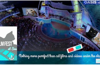 CatWisdom101.com Cat Film Fest at Sea