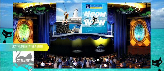 Cat film fest at sea 2016