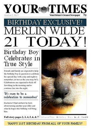 Merlin cat 21st Birthday