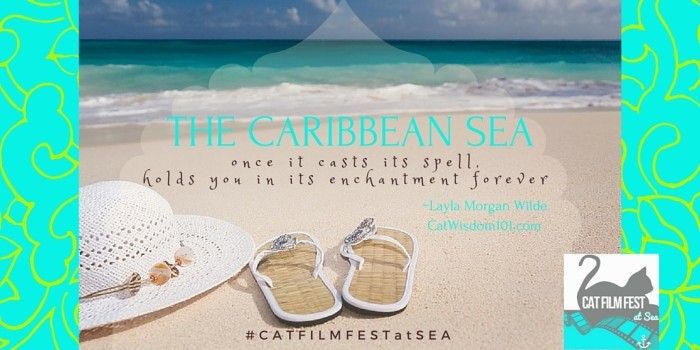 The Caribbean Sea quote #catfilmfestatsea