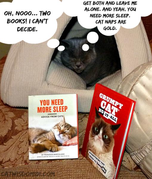 Chronicle books_grumpy cat_you need more sleep